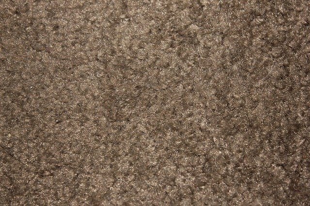 How Do I Keep My Carpet Looking New